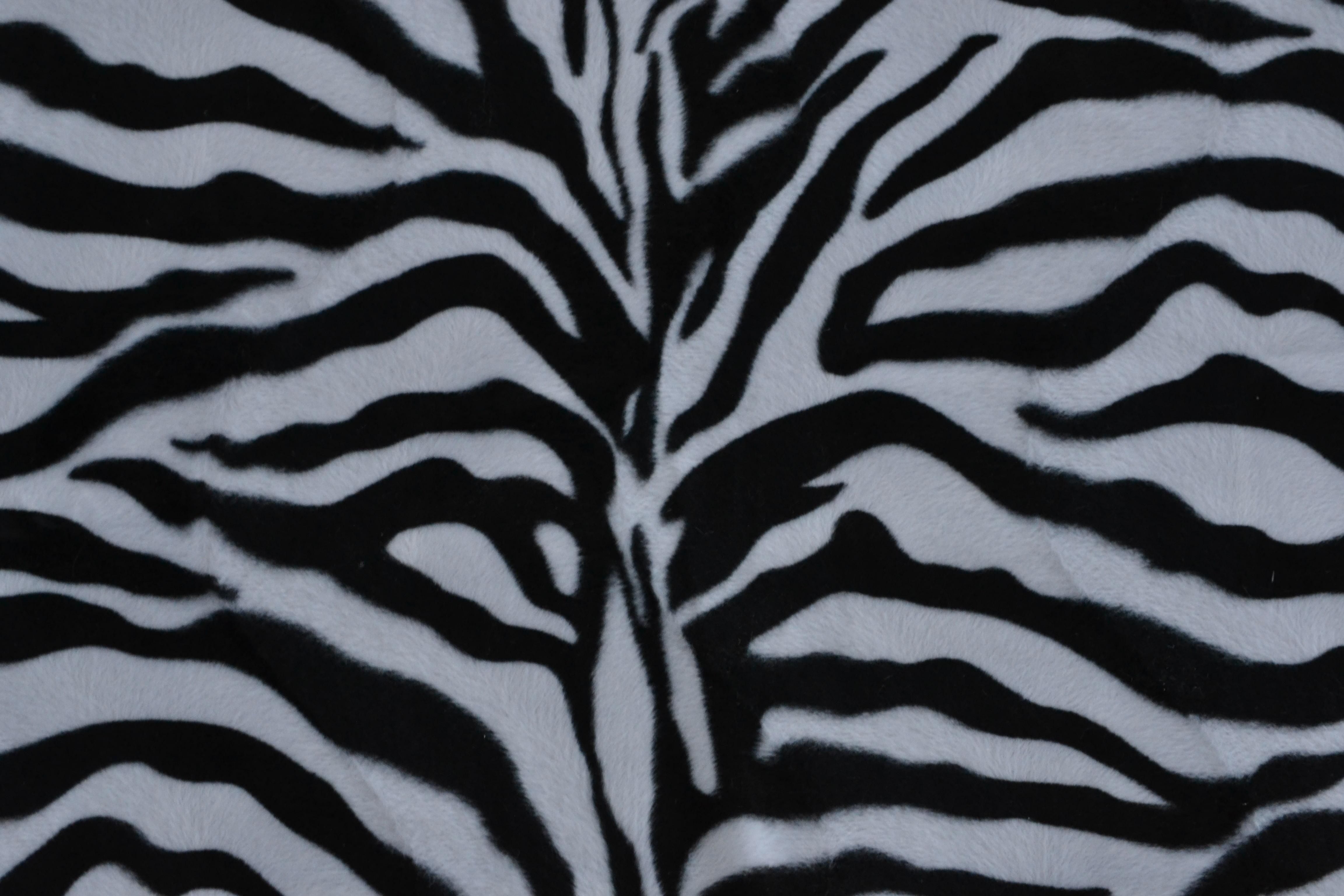 tissu zebre